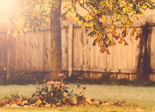 AutumnMamaSm